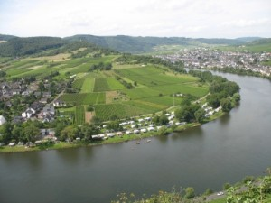Campingplatz Wolf - Traben-Trarbach - Moezel