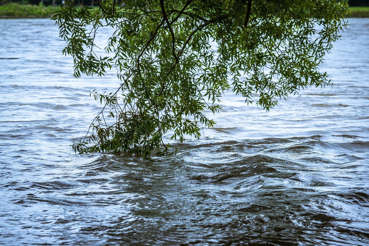 Hoog Water Moezel