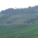 Neef-Petersberg-Moezel